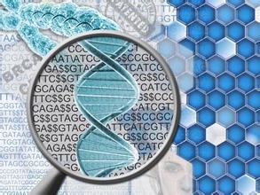 重磅:分子诊断行业分析