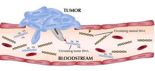 多元化检测技术助力液体活检(ctDNA)临床应用